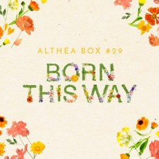 [Now Or Never] [Althea Box] Born This Way Box