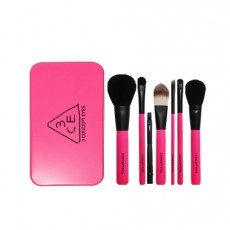 Mini Brush Kit (Pink)