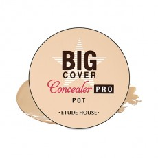 Big Cover Pot Concealer Pro