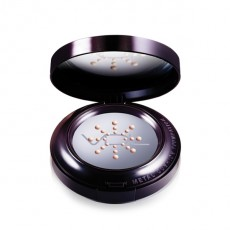 VDL Expert Metal Cushion Foundation (No Refill)