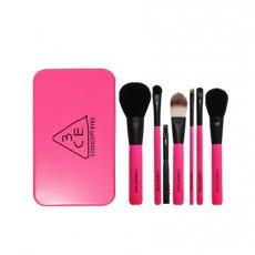 Mini Brush Kit (Pink)